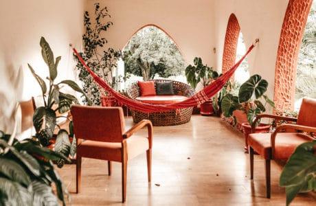 Miejska dżungla na własność: styl urban jungle w domu i mieszkaniu