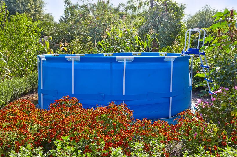 wysoki niebieski basen na stelażu zdrabinką pośród czerwonych kwiatów wdużym ogrodzie