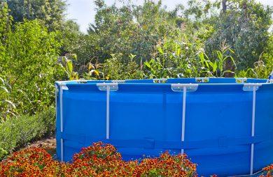 wysoki niebieski basen na stelażu z drabinką pośród czerwonych kwiatów w dużym ogrodzie