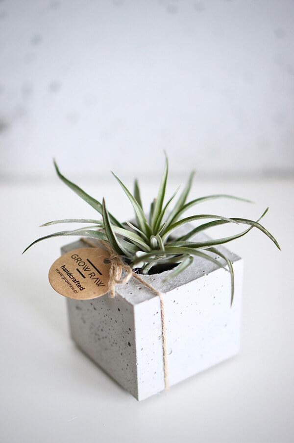 betonowa doniczka wkwadratowej formie