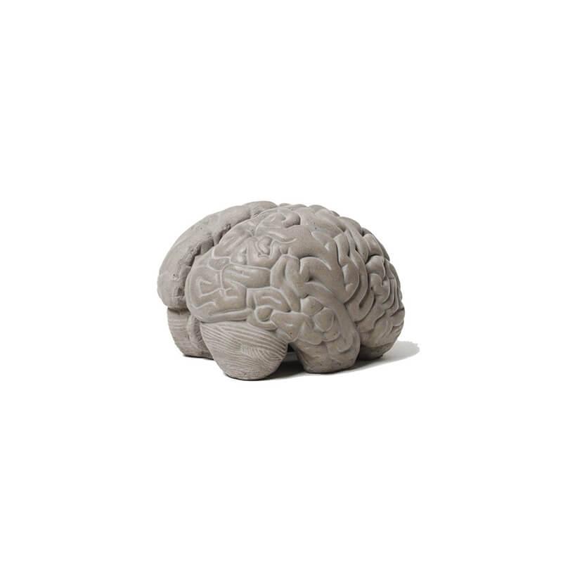 stojak na książki zbetonu wkształcie mózgu