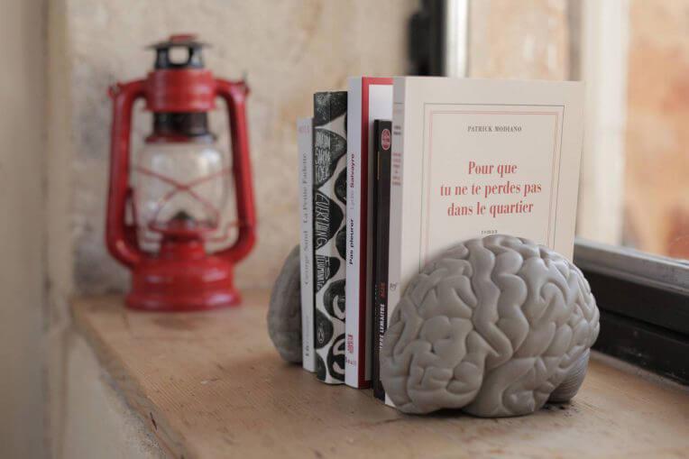 aranżacja stojak na książki zbetonu wkształcie mózgu