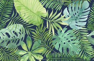 duże zielone liście jak namalowane farbami wodnymi