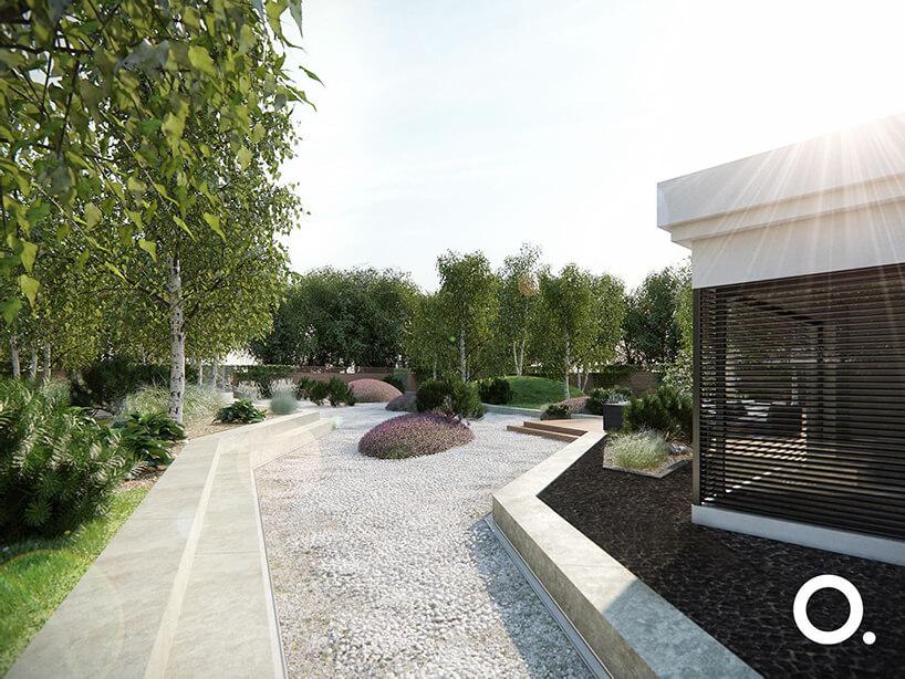wizualizacja przestrzeni zgodnego zbiophilic design od Studio.O. ogród zbiałą kamienną alejką na tle brzóz