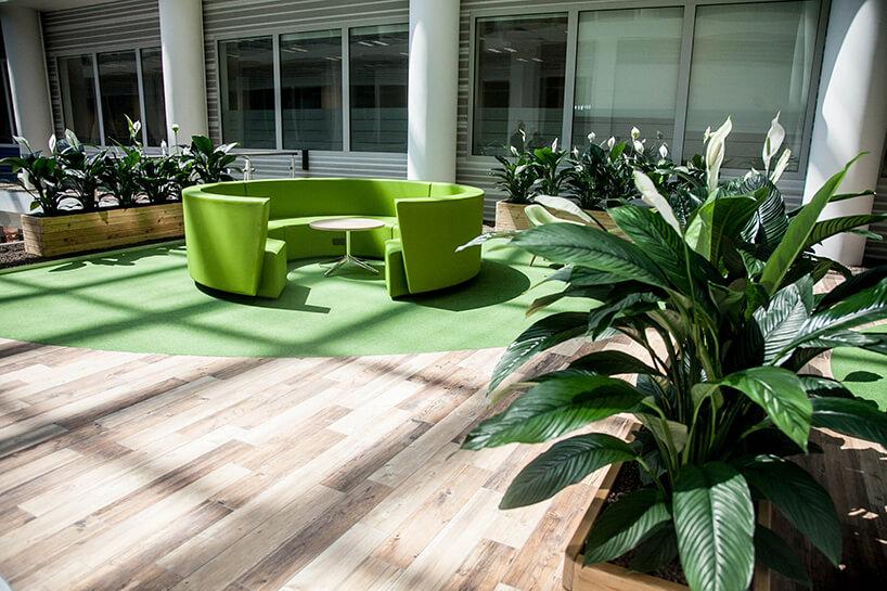 zielona okrągłe siedzisko zwyższym oparciem pośród roślin wdługich drewnianych donicach