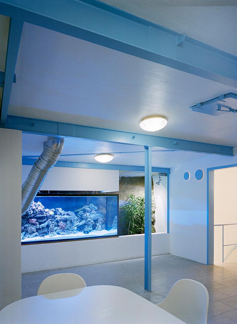 duże akwarium ibiały stół