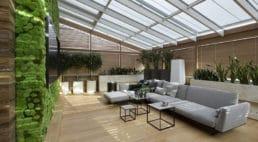 salon ze ścianą zroślin