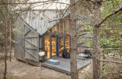mały drewniany domek bookwarm cabin w środku lasu