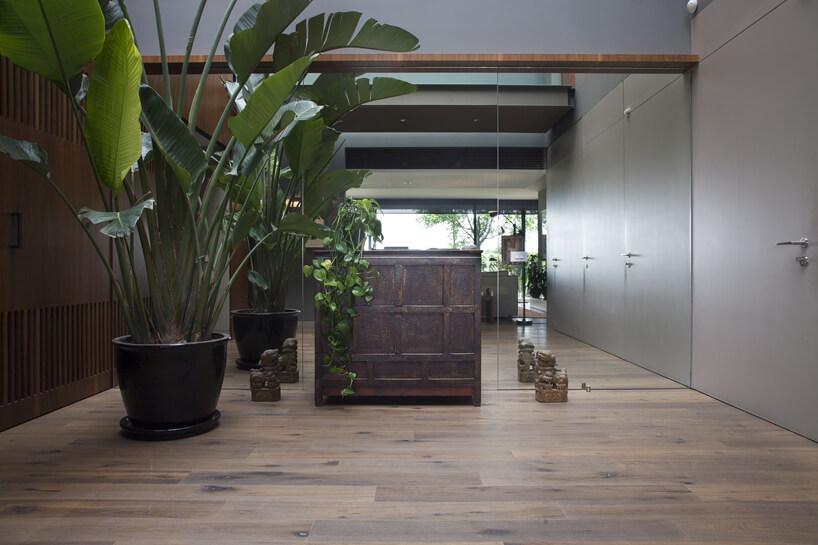 brązowa drewniana komoda obok dużej rośliny na tle ściany luster