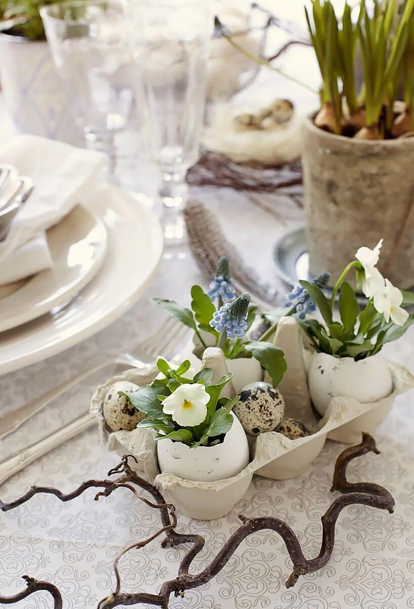 kwiatki wskorupkach po jajkach na wielkanocnym stole