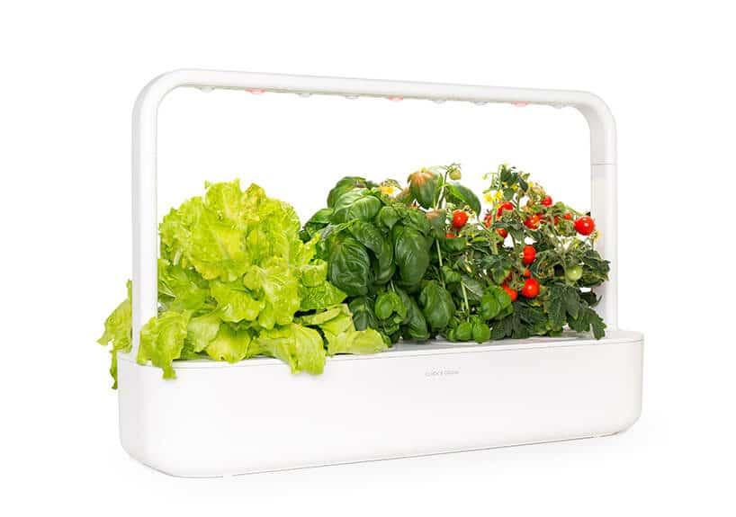 nowoczesny biały pojemnik do hodowania warzyw bądź roślin zoświetleniem led