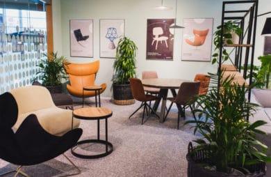 kilka foteli w miętowym pomieszczeniu z wykładziną i zielonymi roślinami