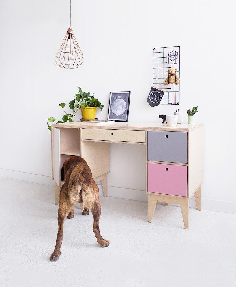 małe biurko Fuss od Wood Republic zkolorowymi frontami zipsem szukającym czegoś wszafce