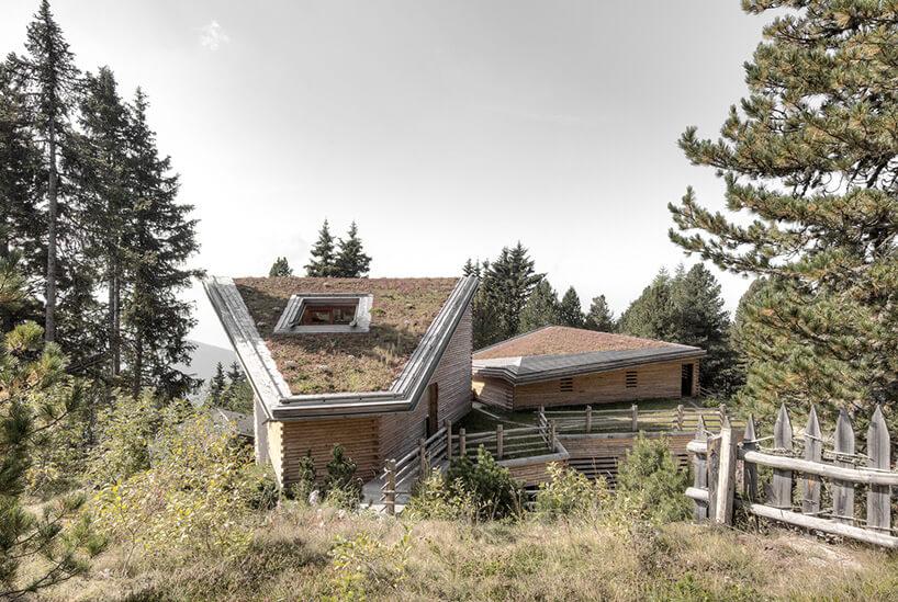 alpejska chata od tyłu