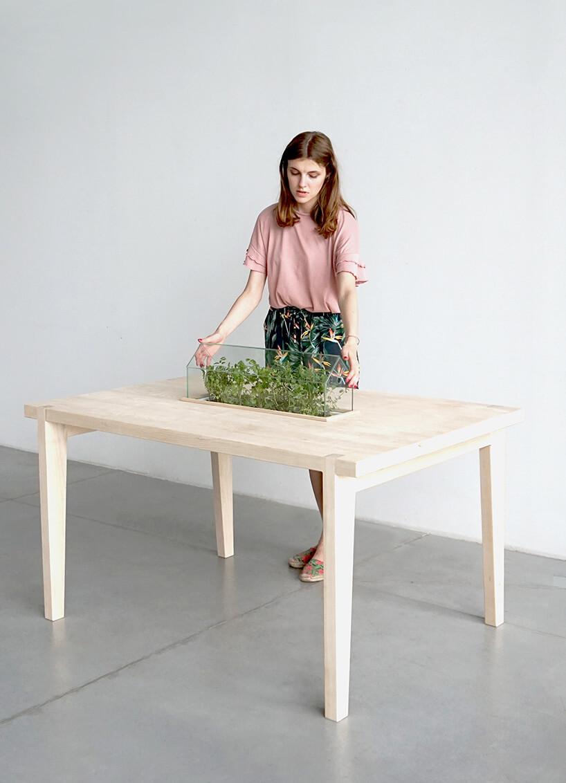 kobieta przy stole zwnęką na doniczki