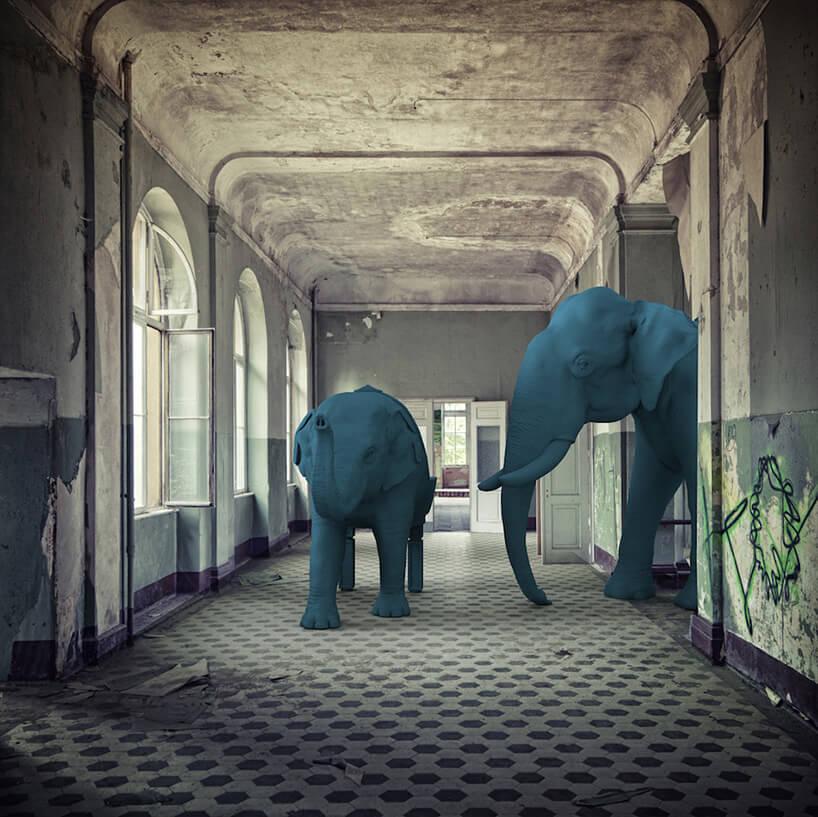 dwa niebieskie słonie na podłodze wkratkę