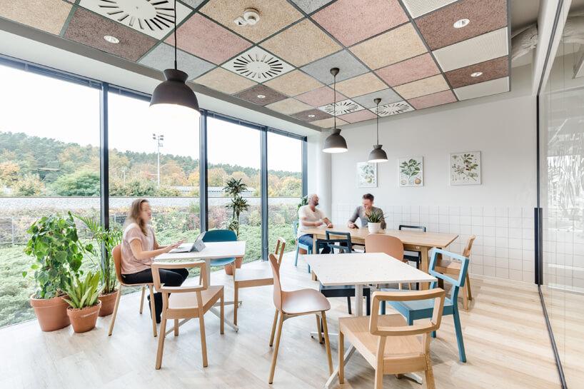 ekologiczne biuro od workplace solutions przestrzeń ze stolikami ikrzesłami do pracy ba tle widoku na las