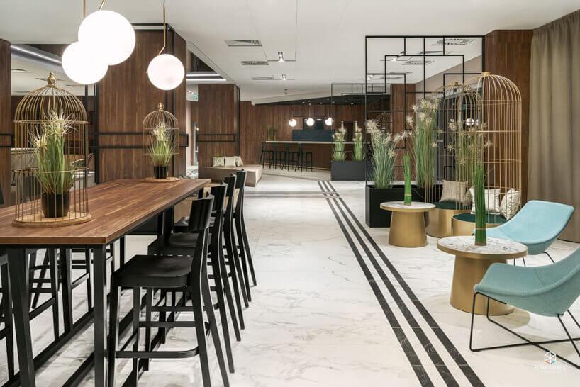 czarne ibłękitne krzesła brązowe stoły kaktusy na tle brązowych ścian