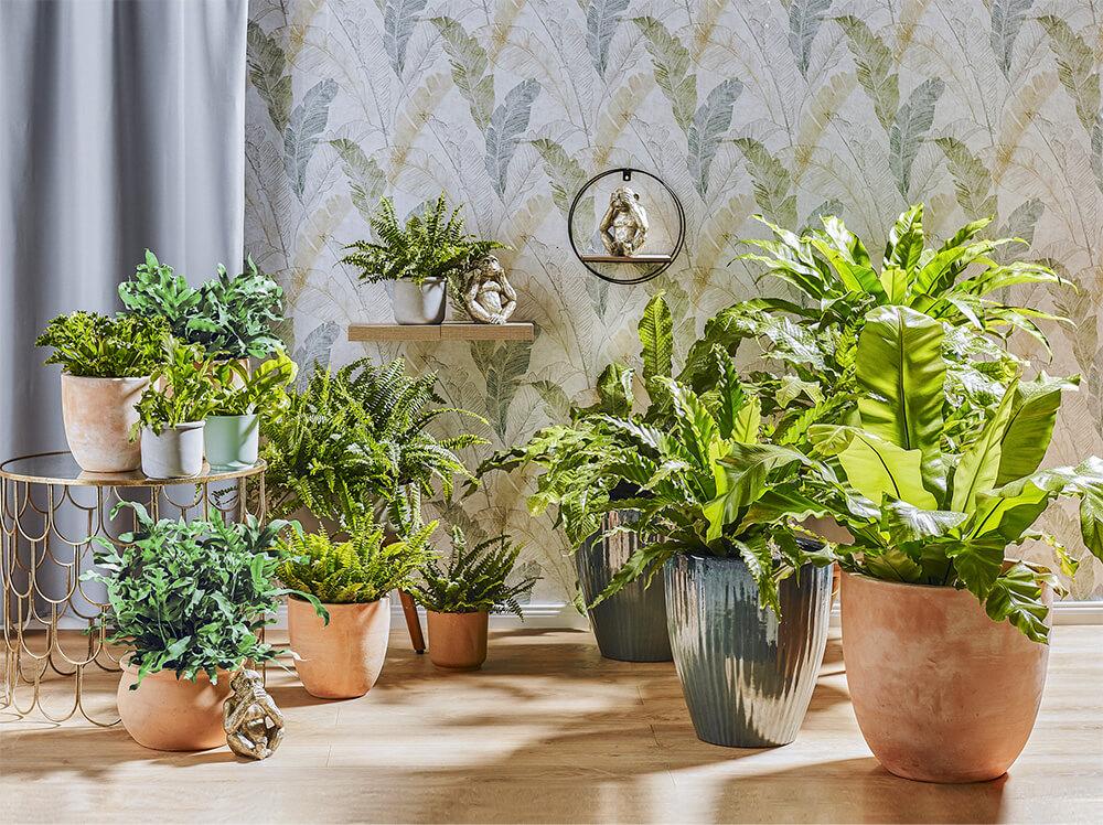 Znaczenie roślin będzie tylko rosnąć. Jak projektować biofilnie?