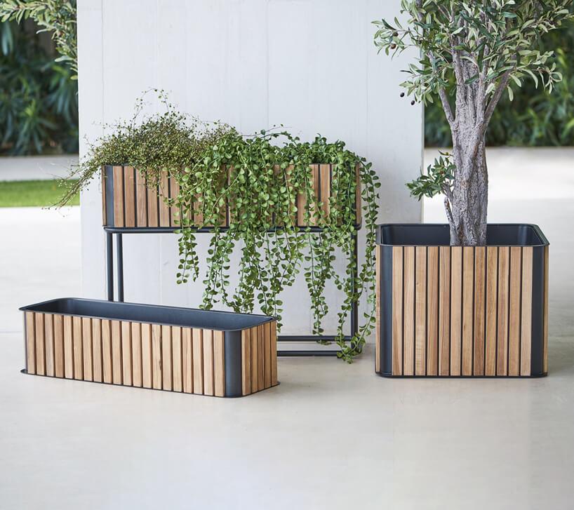 trzy duże doniczki zkolekcji COMBINE, CANE LINE, SPENSEN wykończone drewnianymi deseczkami