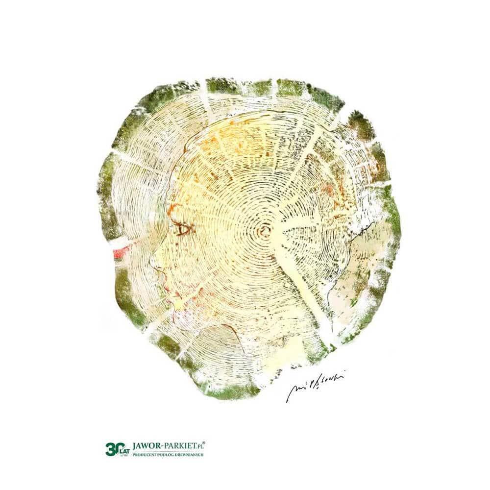 Jawor-Parkiet widziany oczami znanych artystów