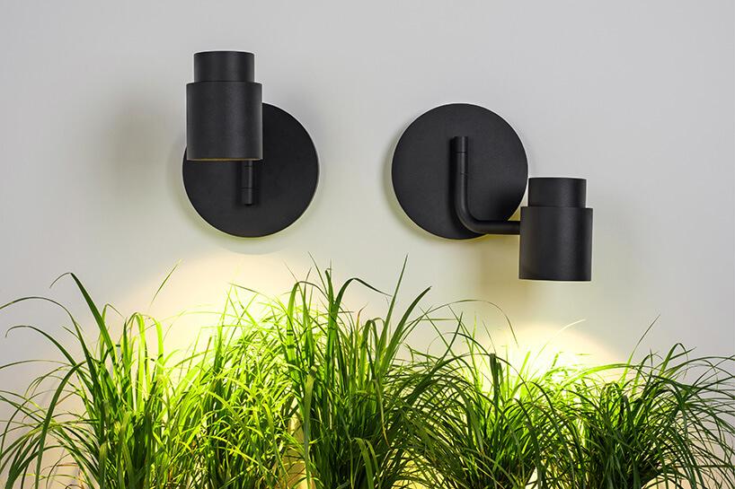 dwa czarne reflektory nad roślinami