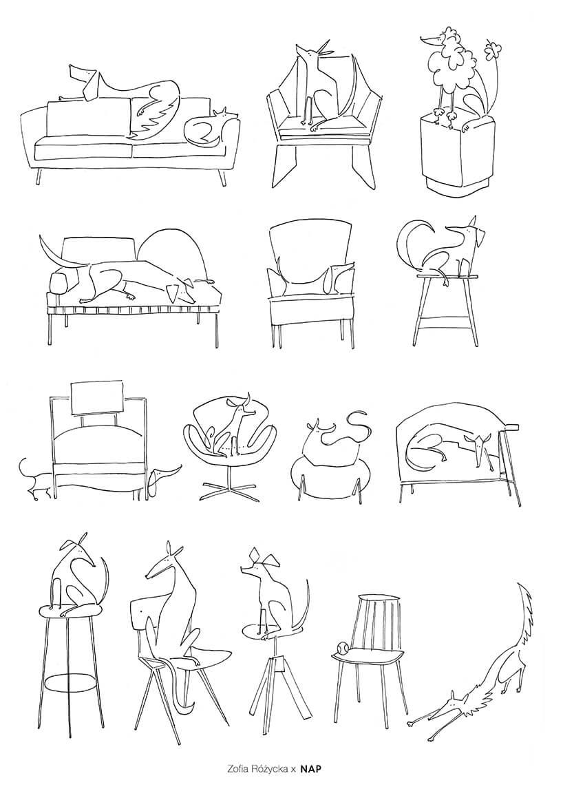 kolorowanka zróżnymi siedziskami na których siedząc psy