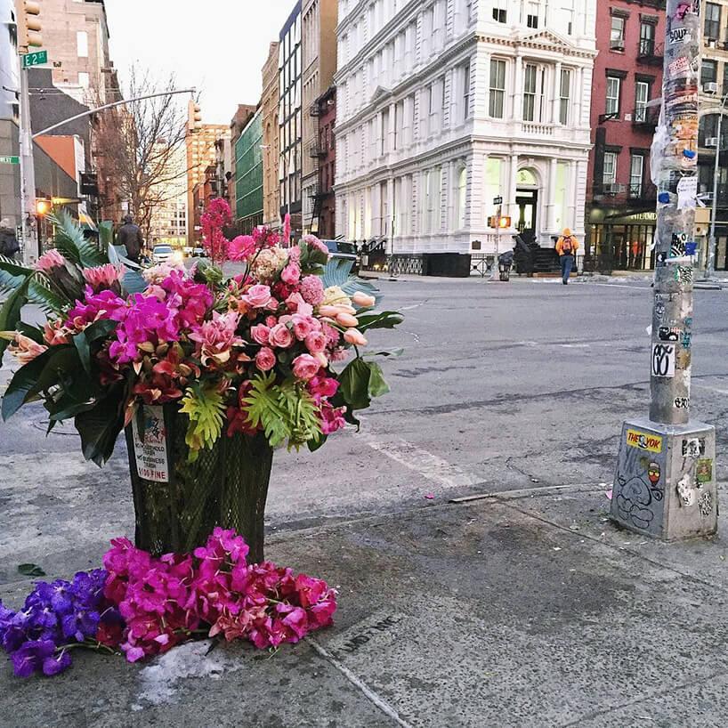 fioletowe iróżowe kwiaty wśmietniku miejskim