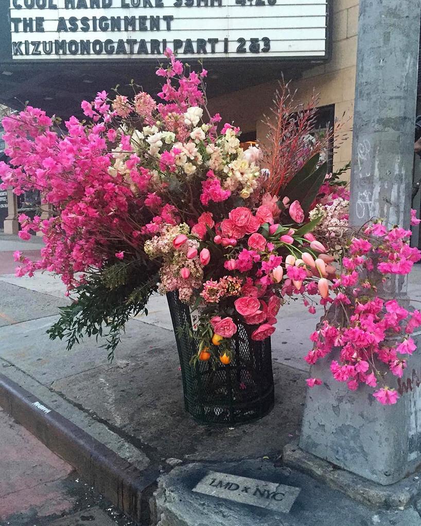różowe kwiaty wkoszu miejskim