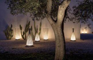 duże drzewo w oświetlonym ogrodzie