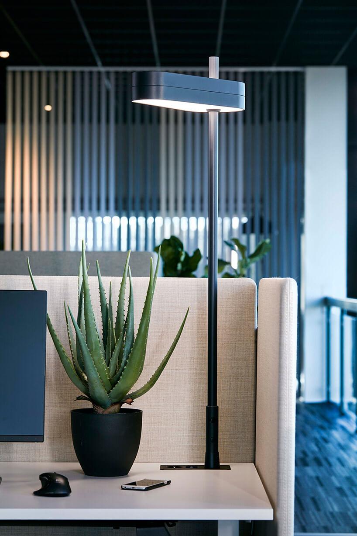 wysoka niebieska lampa na biurku ze ścianką