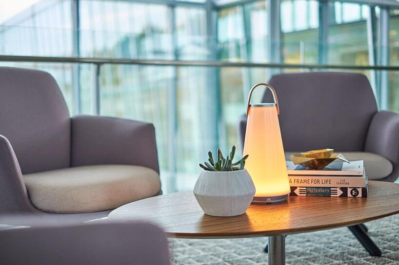 mała lampa stołowa na stoliku obok sukulenta