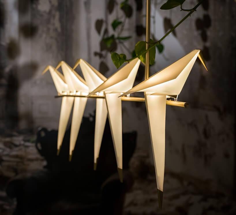 wyjątkowa lampa wisząca Perch Light Branch od Moooi siedzące ptaki na złotym drążku zdługimi wiszącymi ogonami