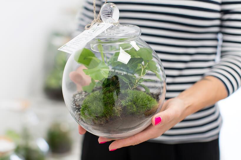 kobieta trzymająca wdłoniach szklane naczynie zmałymi roślinami wśrodku