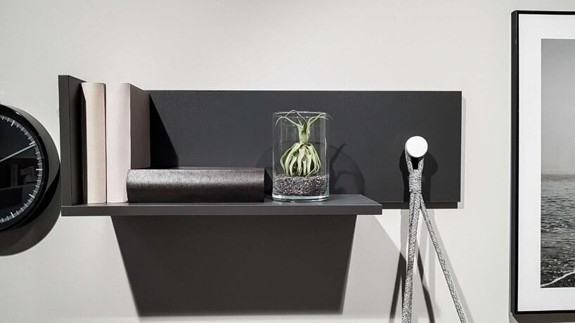 mała roślina wsłoiku na czarnej półce wiszącej