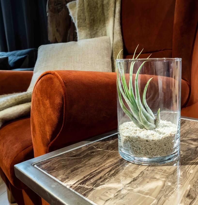 jeden sukulent wwysokim szklanym naczyniu zbiałymi kamykami na stoliku zbrązowym kamiennym blatem wmetalowej ramie