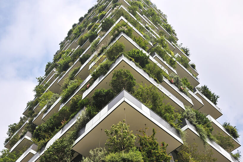 zielona elewacja wieżowca
