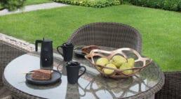 nały stolik zjedzeniem ikubkami obok krzeseł wogrodzie zzieloną trawą