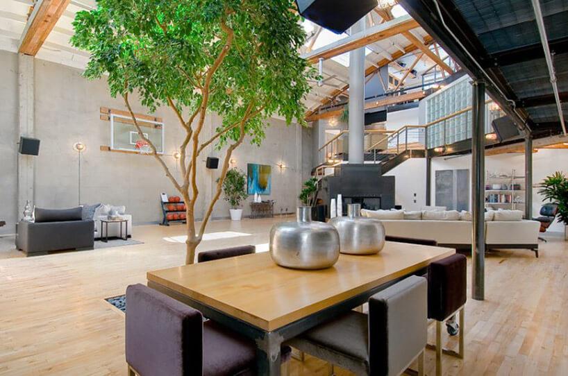 brązowy stolik drzewo biała kanapa wsalonie