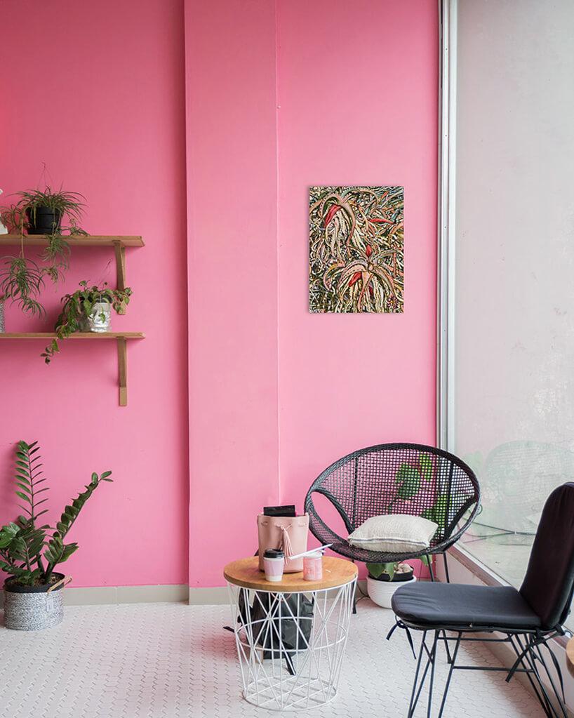biofiliczne wnętrze na tle różowej ściany