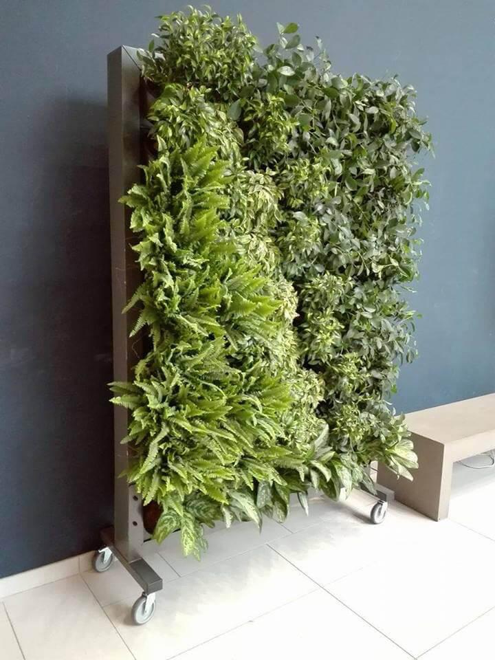 zielona ściana na kółkach