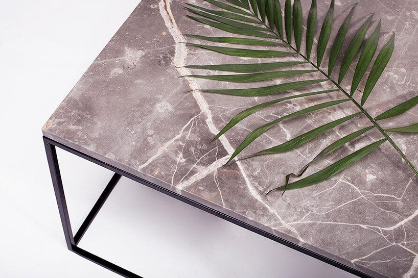liść leżący na marmurowym blacie stolika