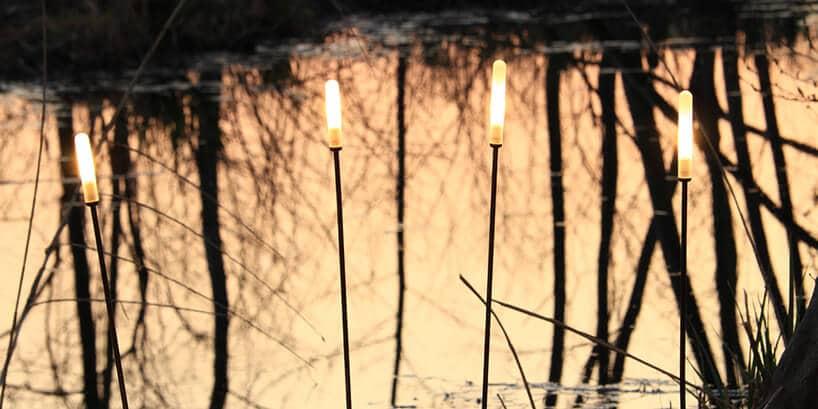 cztery cienkie wysokie lampy Soffione, Inverlight, przypominające wysoką trawę nad brzegiem stawu