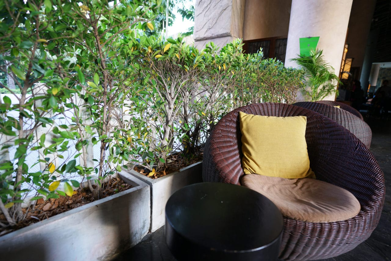 fotel zekorattanu technorattanu wogrodzie wokół zieleni