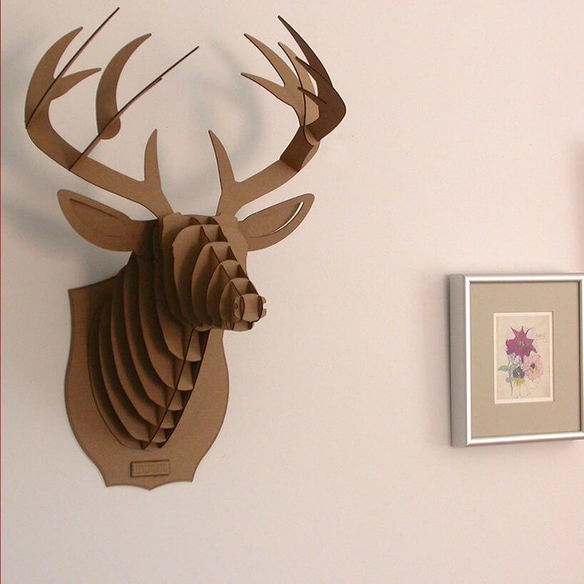brązowy łoś białej ścianie