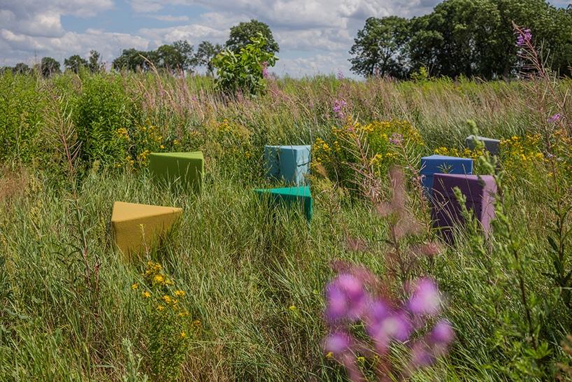 kilka kolorowych puff VANK na łące zwysoką trawą za fioletowym kwiatem
