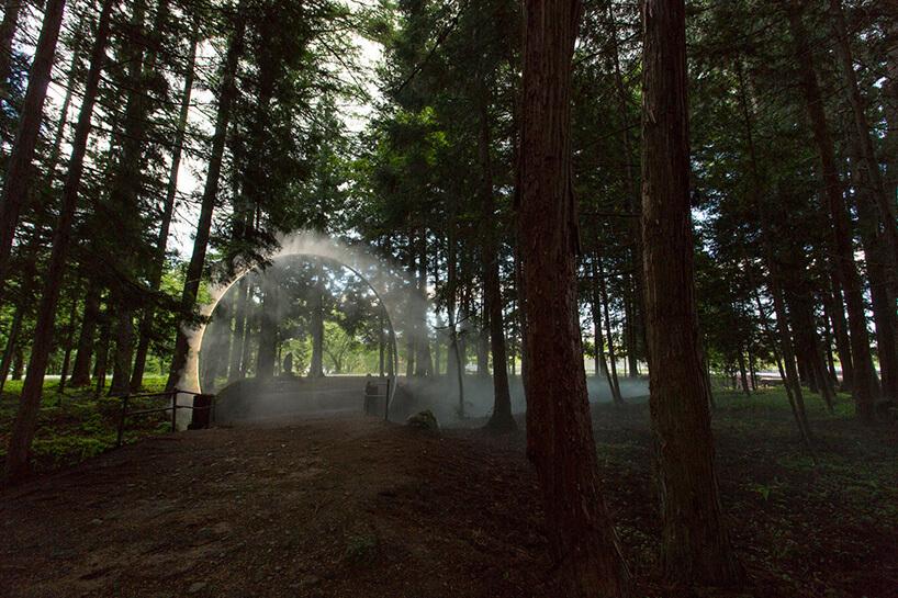 sztuczna mgła wdziennym lesie