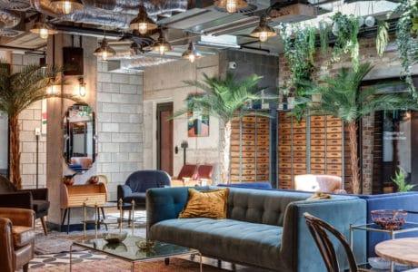 wnętrze loftowe z szarą kanapą oraz beżową poduszką w pomieszczeniu z dodatkami zielonych palm