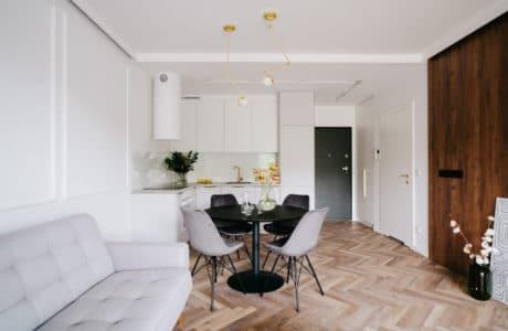 Modern classic w mieszkaniu nad Odrą