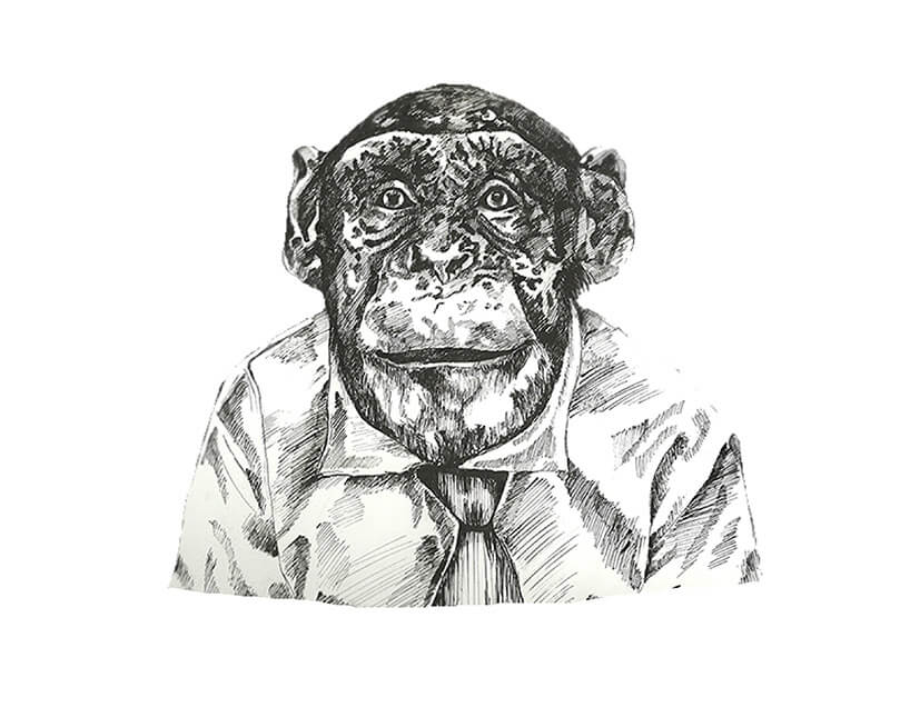 rysunek małpy wkoszuli ipod krawatem